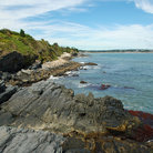 Picture - The Cliff Walk in Newport, Rhode Island.