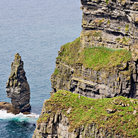 Picture - The Cliffs of Moher in County Clare.