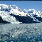 Picture - The icy waters of College Fjord.