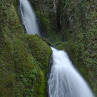 Picture - Lush surroundings of the Wahkeena Falls at Columbia River Gorge.