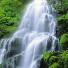 Picture - Fairy Falls in the Columbia River Gorge.