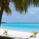 Picture - White sand beach in the Cook Islands.