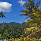 Picture - Landscape of the Cook Islands.