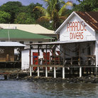 Picture - Dive shop on the water front at Utila.