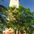 Picture - Coral Gables water tower.