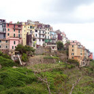 Picture - Colorful buildings in Corniglia, Cinque Terra.
