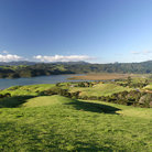 Picture - The landscape of Coromandel Peninsula.