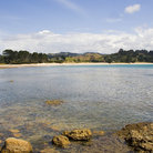 Picture - Calm day on the Coromandel peninsula .