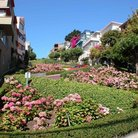 Picture - Lombard Street, the crookedest street in the world, San Francisco.