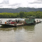 Picture - River Cable Ferry transporting vehicles on the Daintree River.