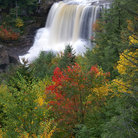 Picture - Fall colors at Blackwater Falls State Park.