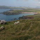 Picture - Landscape of the Dingle Peninsula.