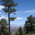 Picture - Landscape in Dixie National Forest, Utah.