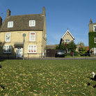 Picture - Ducks in a residential area of Ely.