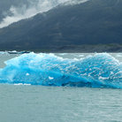Picture - Piece of ice floating in Prince William Sound.
