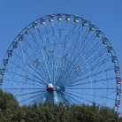 Picture - The Texas Star Ferris Wheel at the State Fair Park in Dallas.