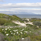 Picture - False Bay, Cape Town.