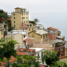 Picture - Houses on the hillside in Cinque Terra.