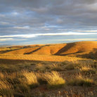 Picture - Rolling hills of the Flinders Ranges.