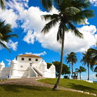 Picture - Palm trees around Forte Monte Serrat in Salvador.