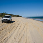 Picture - A vehicle on the beach at Fraser Island.