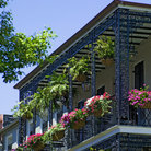 Picture - Typical balconies in the French Quarter of New Orleans.