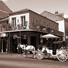 Picture - Horse and carriage in the French Quarter of New Orleans.