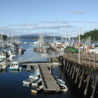 Picture - Boats docked at Friday Harbor.
