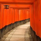 Picture - The Fushimi Inari Taisha shinto shrine, located in Fushimi-ku, Kyoto.
