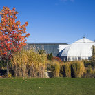 Picture - Autumn at the Garfield Park Conservatory in Chicago.
