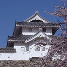 Picture - A Japenese castle in Kofu.
