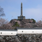 Picture - Japanese Castle in spring at Kofu.