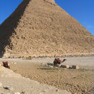 Picture - Pyramid of Chefrens and camel.