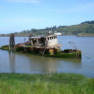Picture - An old sunken tug boat near Gold Beach.