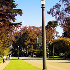 Picture - Lamppost at Golden Gate Park, San Francisco.