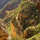 Picture - Bright Angel Trail descending into the Grand Canyon.