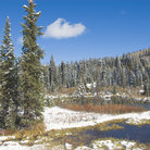 Picture - Snow covered ponds on the Grand Mesa National Forest.