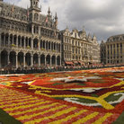 Picture - Flower Carpet at Brussels' Grand Place.