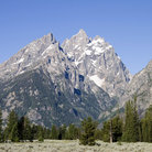 Picture - Mount Tweewinot in the Cathedral Group, Grand Teton National Park.