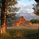 Picture - Moulton Barn in the morning sun, Grand Teton National Park.