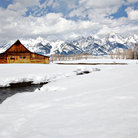 Picture - Snow covered Moulton Barn in front of the Grand Tetons.