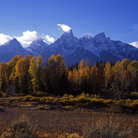 Picture - The Teton Range at Schwabachers Landing, in Grand Teton National Park, Wyoming.