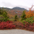 Picture - Fall colors on Grandfather Mountain.