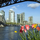Picture - View from Granville Island in Vancouver.