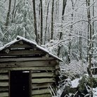 Picture - Wooden shed in winter in Great Smoky Mountains National Park.