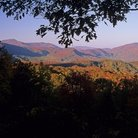 Picture - Autumn in Great Smoky Mountains National park.