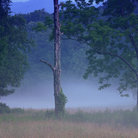 Picture - Twilight at Cades Cove in Great Smoky Mountains National Park.