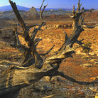 Picture - View to San Rafael Swell near Green River.