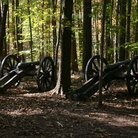Picture - Canons in the trees at Battleground Park in Greensboro.