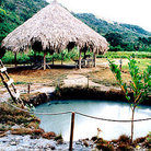 Picture - Natural hot spring pool at Hacienda Aguasana.